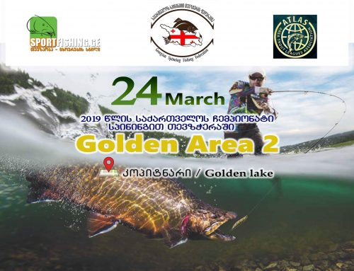 "Spining – ""Golden Area Trout 2"""
