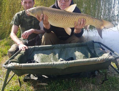 Carp Fishing – 2019 წლის საქართველოს ჩემპიონატის პირველი ტური